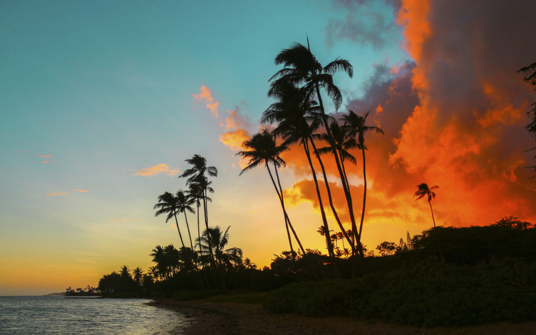 Graphcom Returns from Tropical Paradise & NAACO 2017