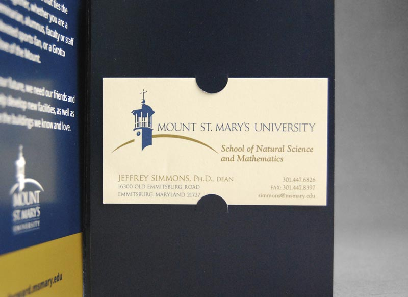 Mount St. Mary's University capital campaign sample
