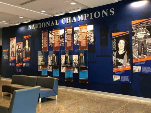 championship wall graphics