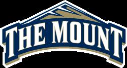 the mount logo