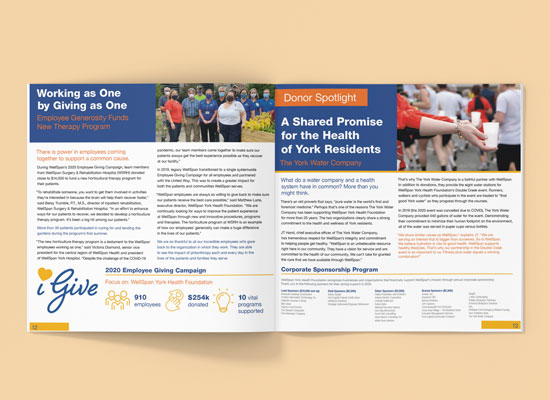 wellspan impact report spread