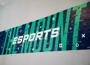 wall vinyl graphic